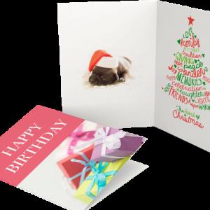 Seasonal Greeting Card